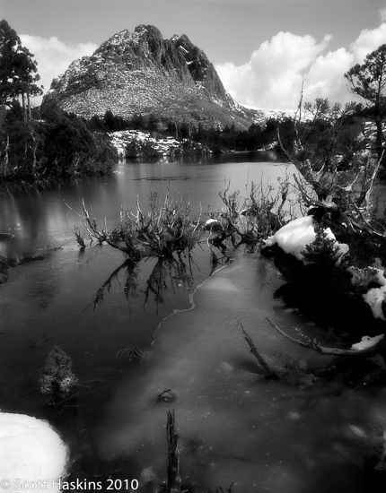 Little Horn, Cradle Mountain Lake St Clair National Park, Tasmania